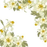 Frame with white blooming flowers Stock Illustration