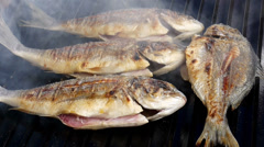 Dorado, Sea Bream, Gold mackerel, madai fish grilled over coals without rotating Stock Footage