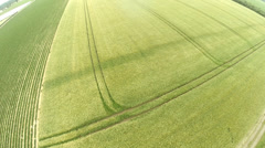Aerial Video of a grain field Stock Footage