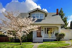 Little old cute house with a blooming cherry tree. Stock Photos