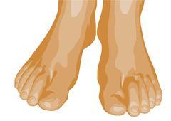 Feet Stock Illustration