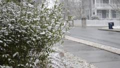 Snow Begins to Accumulate on Bushes Stock Footage
