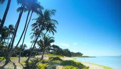HD Tropical Palm Tree Beach, Sun Lens Flare Stock Footage