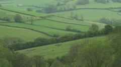 WS Rural landscape / Somerset, UK Stock Footage