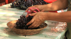 Woman trimming a grape cluster Stock Footage