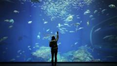 Big aquarium and people Stock Footage
