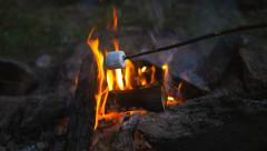 roasting marshmallow slowmotion - stock footage