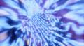 Wormhole flight through space warp speed dimension Footage
