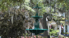 Fountain and Spanish Moss Stock Footage