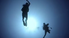 Silhouette view scuba diving couple Stock Footage