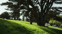 USA, California, San Francisco, View of Alamo Square Park Stock Footage