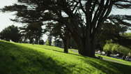 Stock Video Footage of USA, California, San Francisco, View of Alamo Square Park