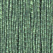 Stock Illustration of bamboo background