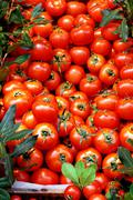 Red fresh tomatoes at market place Stock Photos