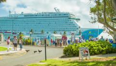 Chickens Crossing Road at Bermuda Cruise Port Stock Footage