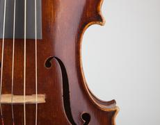 Viola Detail - stock photo