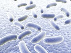 Colony of bacteria - stock illustration