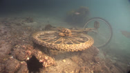 Stock Video Footage of Harbour Rubbish Push bike underwater encrusted in growth #61-51