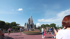 Cinderella's Castle Stock Footage