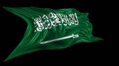 Flag of Saudi Arabia Stock Footage