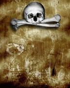 Stock Illustration of Human skulls and bones