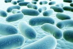Bacteria Stock Illustration