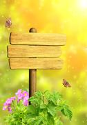 Message of nature - stock illustration