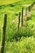 country fence - farmland country wood fence in vertical telephoto photography - stock photo