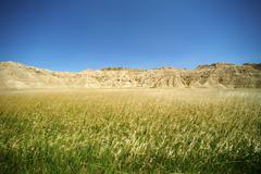 Badlands meadow horizontal photo. badlands national park, usa. Stock Photos