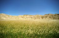 Stock Photo of badlands meadow horizontal photo. badlands national park, usa.