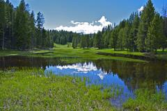 Small yellowstone lake - yellowstone plateau. yellowstone scenery photo colle Stock Photos