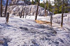 Yellowstone travertine - mammoth hot springs landscape. yellowstone national Stock Photos