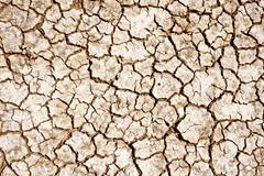 Cracked lands. badlands. cracked soil photo background. nature photo collecti Stock Photos