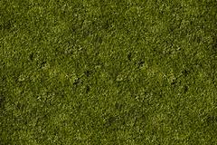 Hi-res grass field texture - short cut grass background Stock Photos