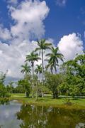 Fairchild tropical botanic garden, FL Stock Photos