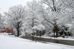 Winter in Washington DC: Palisades Stock Photos