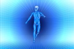 run men x-ray anatomy - stock illustration