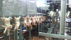 MDM or mechanically deboned meat Stock Footage