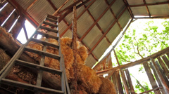 Low Angle Barn Ladder Stock Footage