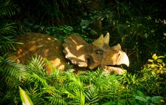 Zoo - stock photo