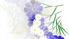 Meadow of wildflowers on white background.  Animation. Stock Footage