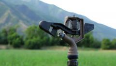 Sprinkler Head in Wheat Field Stock Footage
