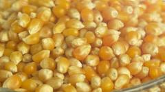 4K Corn Kernel Rotating Macro Closeup Stock Footage