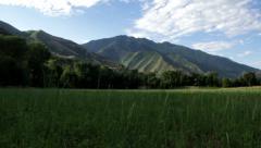 Mountain Field Stock Footage