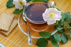Tea with dog-rose blossom Stock Photos