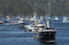 A fleet of herring boats, fishing boats with large net booms Kuvituskuvat