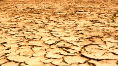 Cracked dry earth. Global warming concept. Full HD 1920x1080p. Slow-mo - stock footage