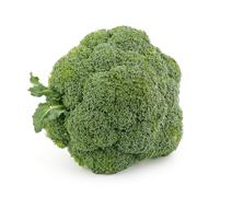 Single broccoli floret - stock photo