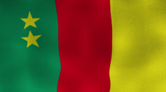 Cameroon Flag, Textile Background Stock Footage