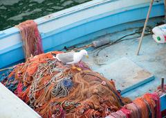 fishing boat and seagull on the net - stock photo